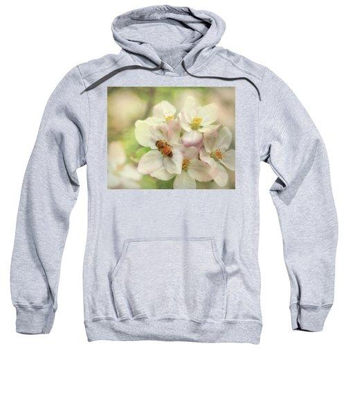 Signs Of Spring Sweatshirt
