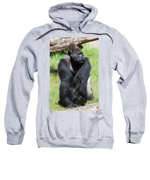 Silverback Gorilla At The San Francisco Zoo San Francisco California 5d3181 Sweatshirt