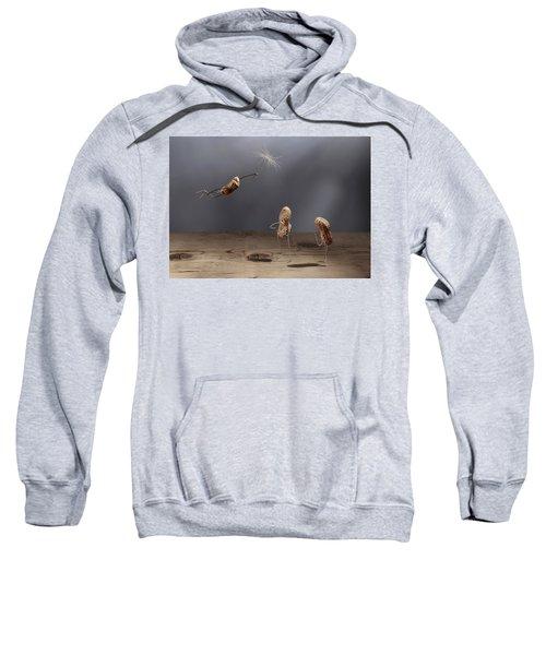 Simple Things - Flying Sweatshirt