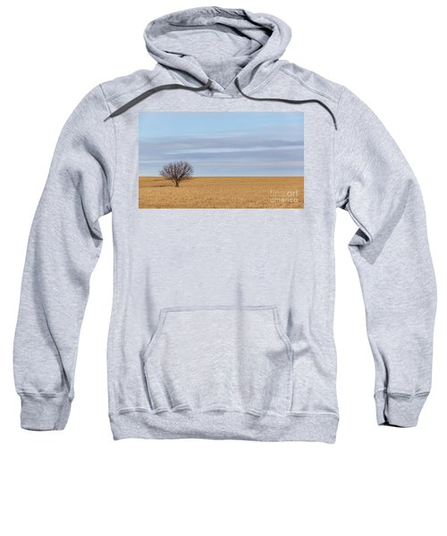 Single Tree In Large Field With Cloudy Skies Sweatshirt