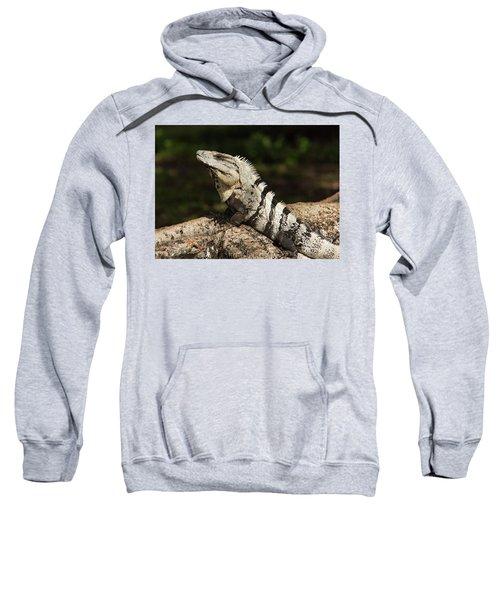 Sir Iguana Mexican Art By Kaylyn Franks Sweatshirt