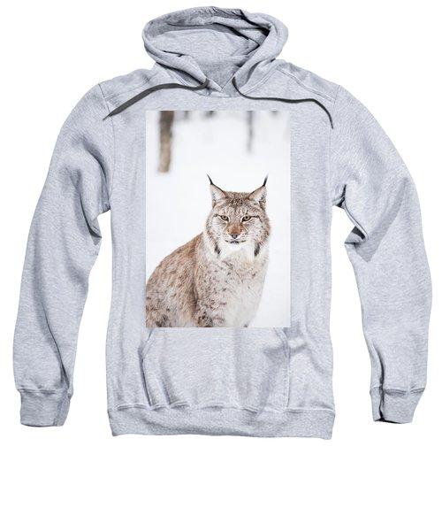 Sitting Pretty Sweatshirt
