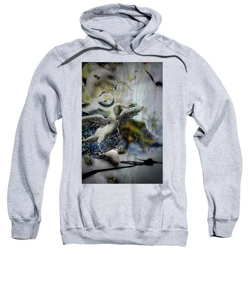 Skateboard Fantasy Sweatshirt