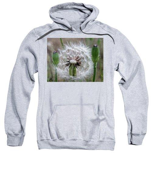Slight Breeze Sweatshirt