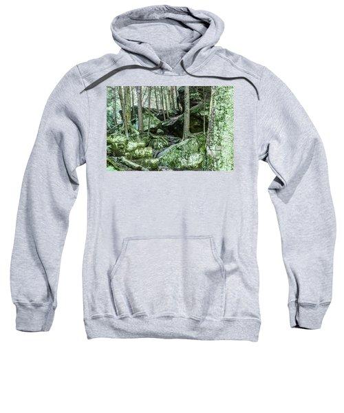 Slippery Rock Gorge - 1933 Sweatshirt