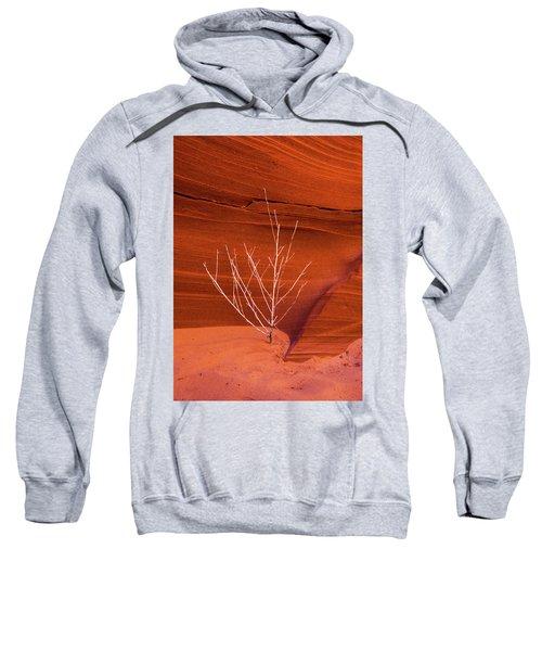 Slot Canyon Sentinel Sweatshirt