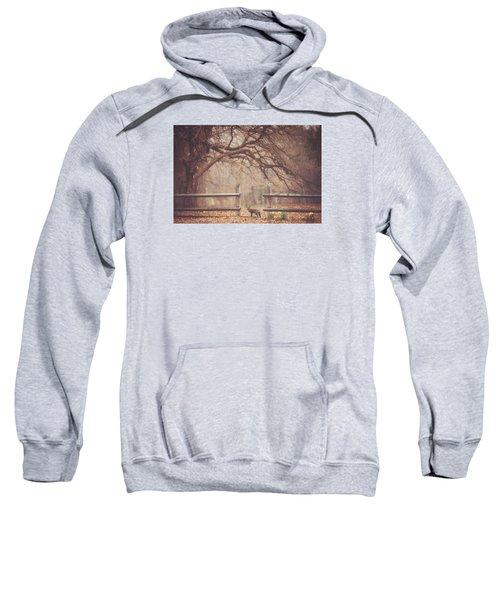 Sly Guy Sweatshirt