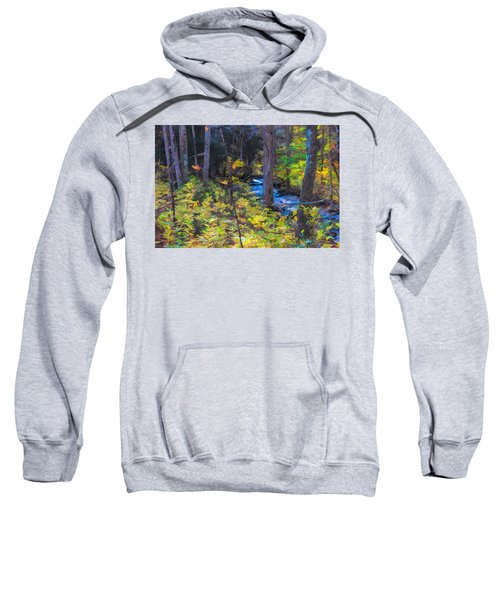 Small Stream Through Autumn Woods Sweatshirt
