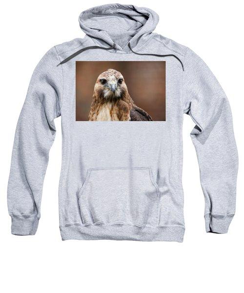 Smiling Bird Of Prey Sweatshirt