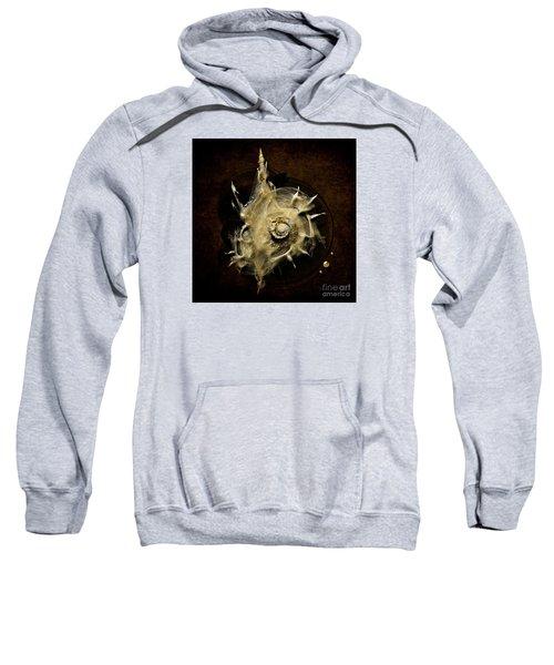 Sea Shell Sweatshirt