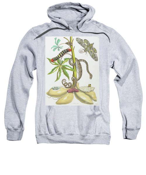 Snake, Caterpillar, Butterfly, And Insects On Plant Sweatshirt