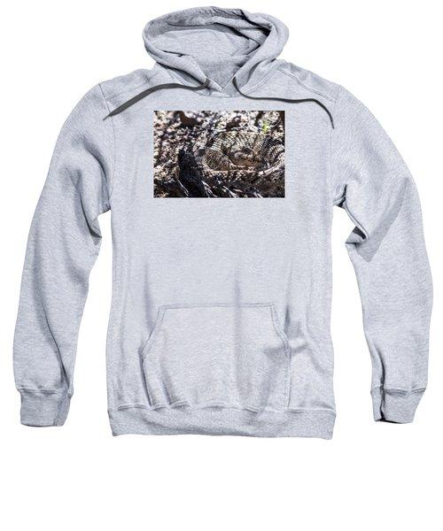 Snake In The Shadows Sweatshirt