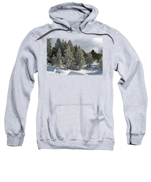 Snow And Ice Covered Evergreens At Sunset Lake  Sweatshirt