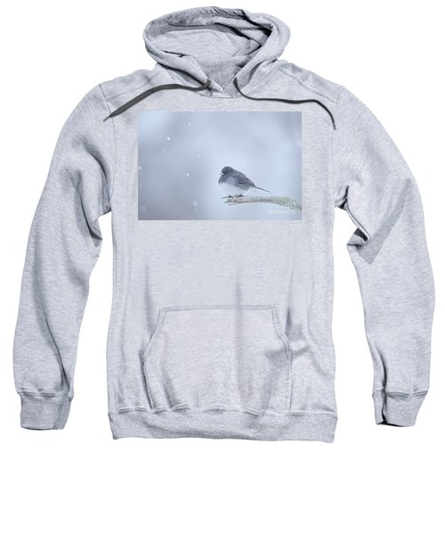 Snow Bird Sweatshirt
