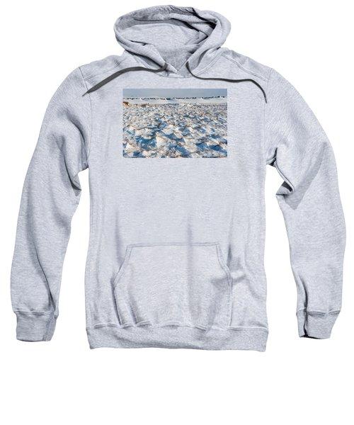 Snow Covered Grass Sweatshirt