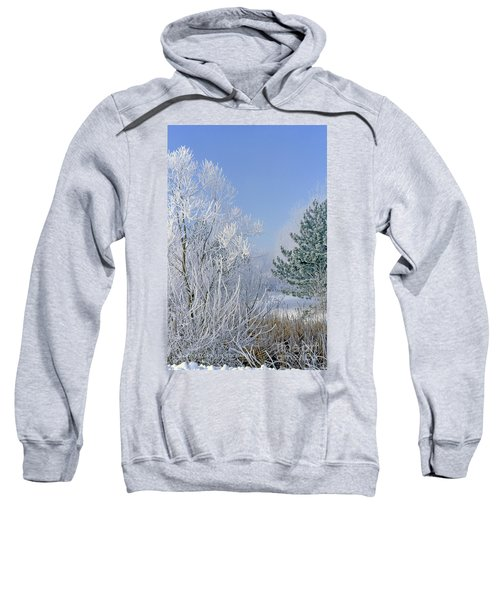 2a357 Snow Covered Trees At Alum Creek State Park Sweatshirt