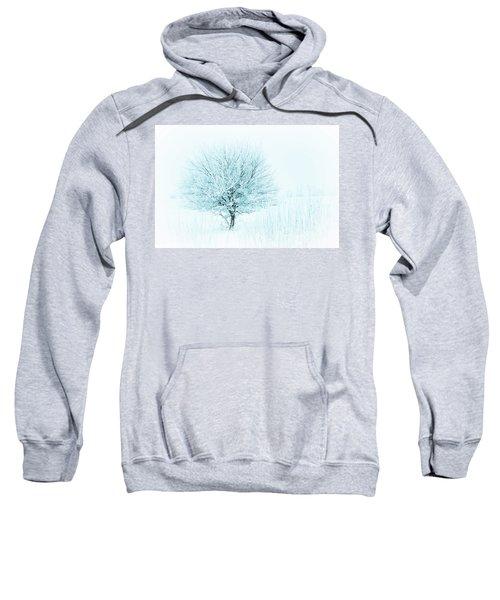 Snow Field Tree Sweatshirt