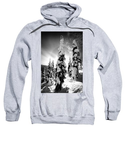Snow Laden Tree Sweatshirt