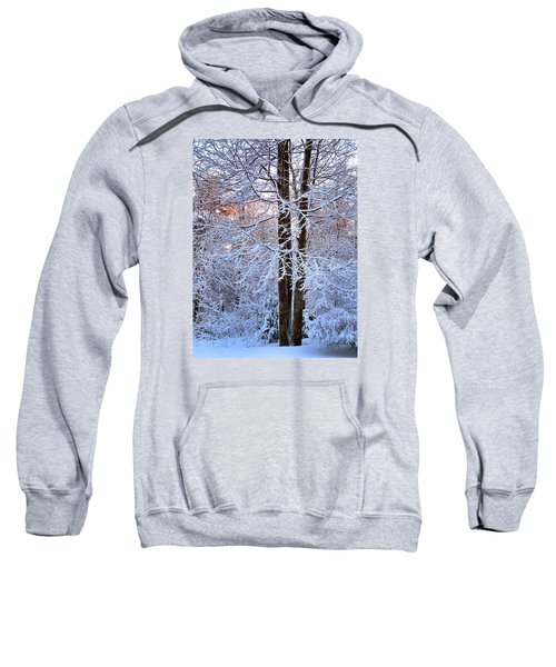Snow Maple Morning Sweatshirt