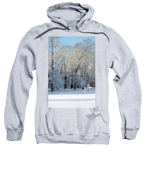 Snow Scene One Sweatshirt