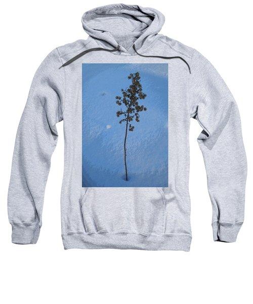 Snow Sleeper Sweatshirt