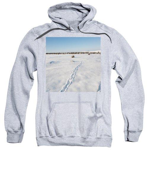 Snow Tracks Sweatshirt