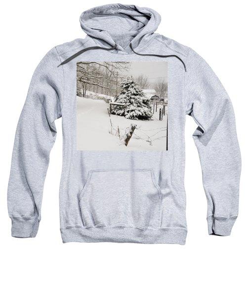 Snow Tree Sweatshirt