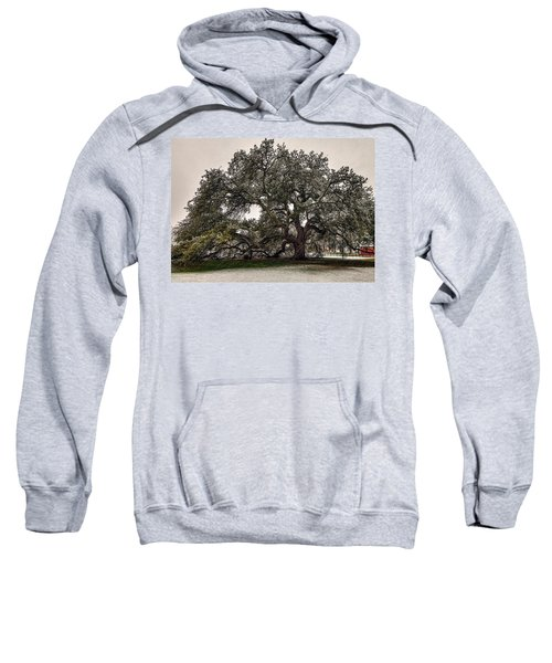 Snowfall On Emancipation Oak Tree Sweatshirt
