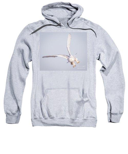 Snowy Owl Flying Dirty Sweatshirt