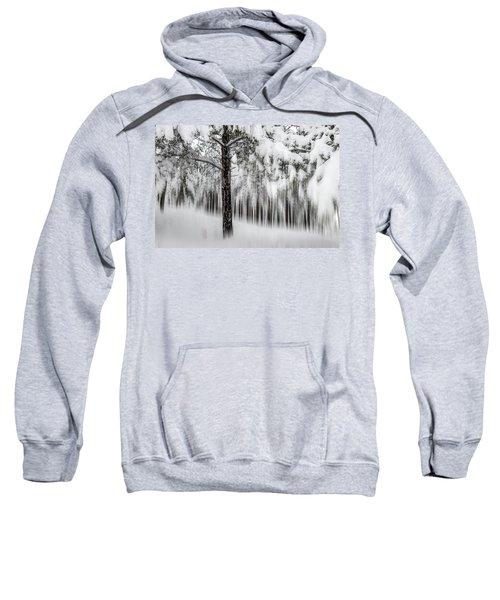 Snowy-2 Sweatshirt