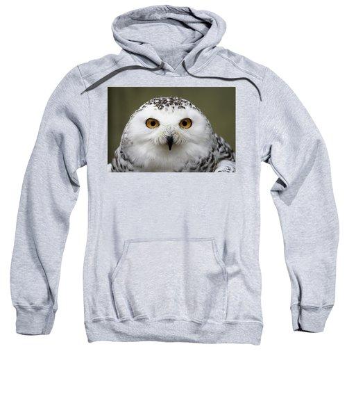 Snowy Eyes Sweatshirt