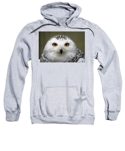Snowy Eyes Sweatshirt