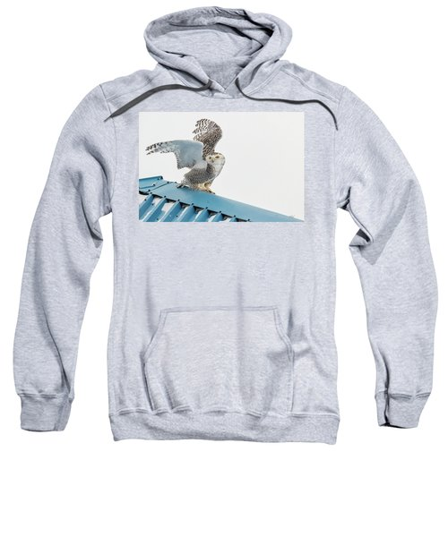 Snowy Model Ambition Sweatshirt