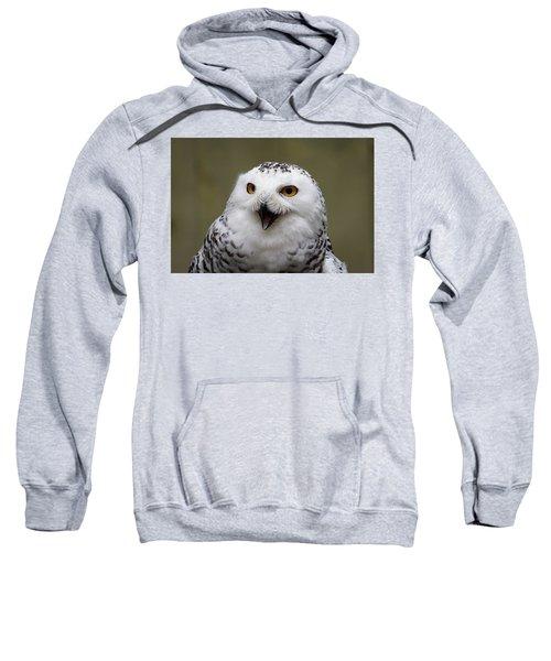 Snowy Sings Sweatshirt