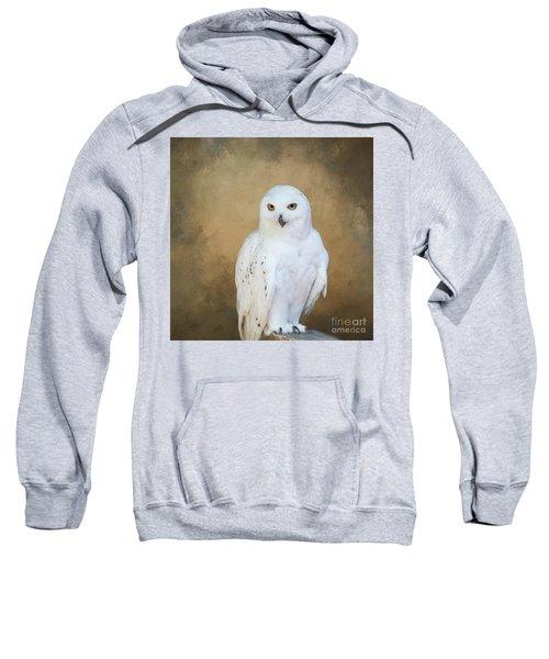 Snowy White Sweatshirt