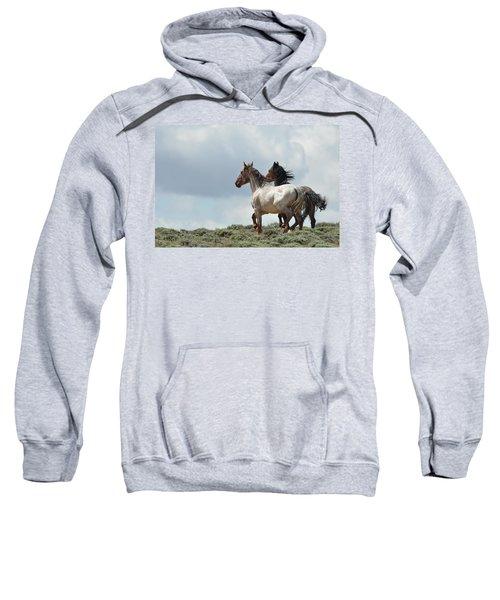 So Long Sweatshirt