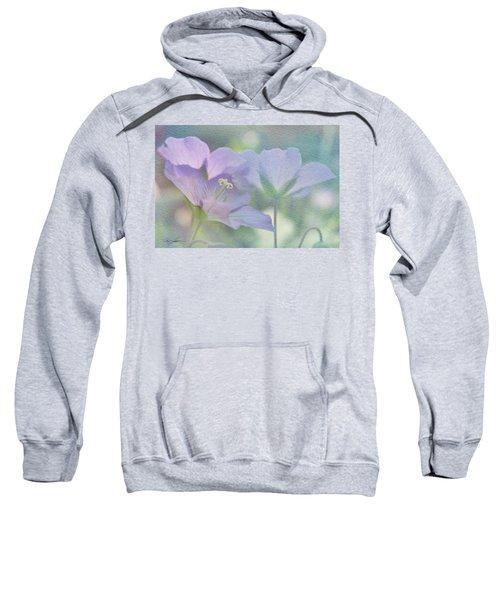 Soft Blue Sweatshirt