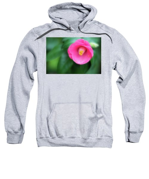 Soft Focus Flower 1 Sweatshirt