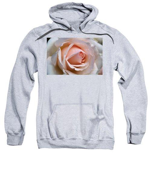 Soft Rose Sweatshirt