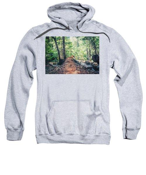 Somber Walk- Sweatshirt