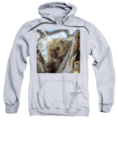 Soul Center Sweatshirt