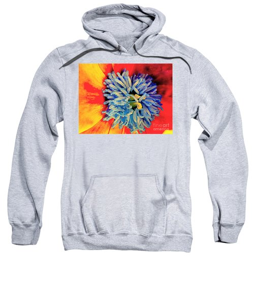 Soul Vibrations Sweatshirt