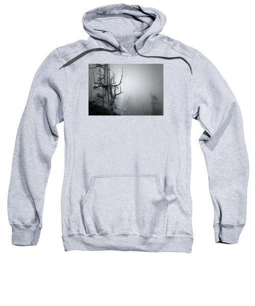 Souls Sweatshirt