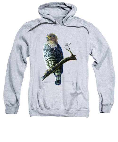 Southern Banded Snake Eagle Sweatshirt