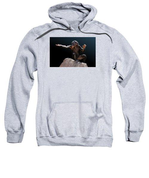 Spare Change? - Bonobo Sweatshirt