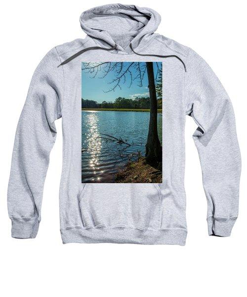 Sparkling Water Sweatshirt