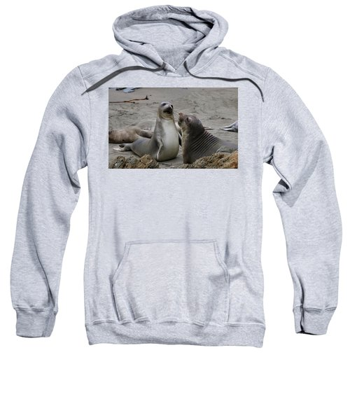 Sparring Seals  Sweatshirt