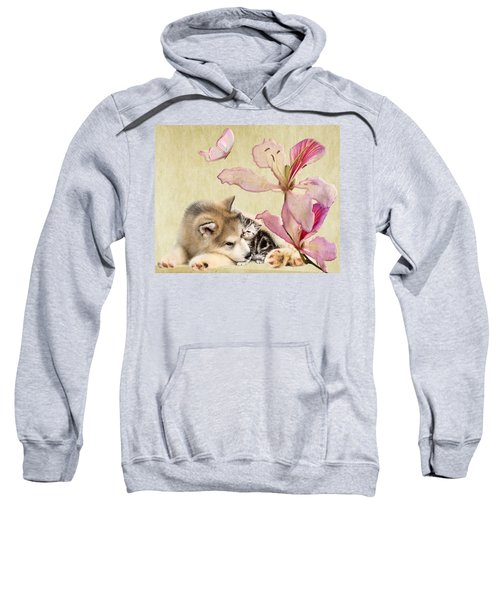 Special Friends Sweatshirt