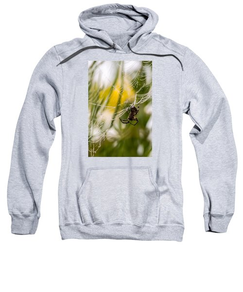Spider And Spider Web With Dew Drops 04 Sweatshirt