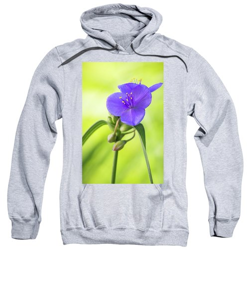 Spiderwort Wildflower Sweatshirt